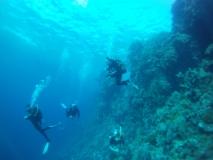 Ein Blick entlang des Riffes
