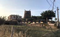 Fiesta del Carmen und lecker Essen an der Mühle